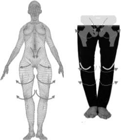 がに股O脚と骨盤の関係