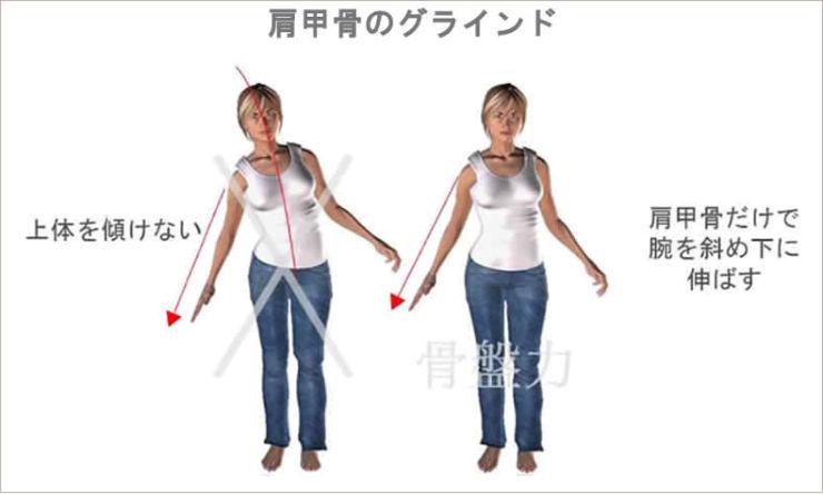 肩甲骨のグラインド